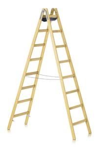 """""""Opsteek duotrap ladder koop"""" title=""""Opsteek duotrap ladder"""""""