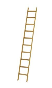 """""""De enkelzijdige ladder is het meest gebruikte soort van ladder kopen"""" title=""""De enkelzijdige ladder is het meest gebruikte soort van ladder"""""""