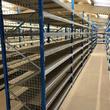 Grootvakstelling - Epsivol - Met Houten legplanken en gaas als zijwand
